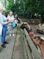 Miniatura zdjęcia: Zwiedzanie Zoo i Muzeum Wikliniarstwa i Chmielarstwa w Nowym Tomyślu